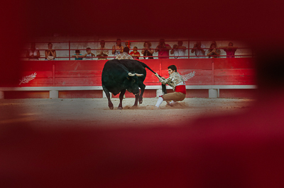 photo-tauromachie-beaucaire-arles-forcados-photo-corrida-novillada-arenes-beaucaire-